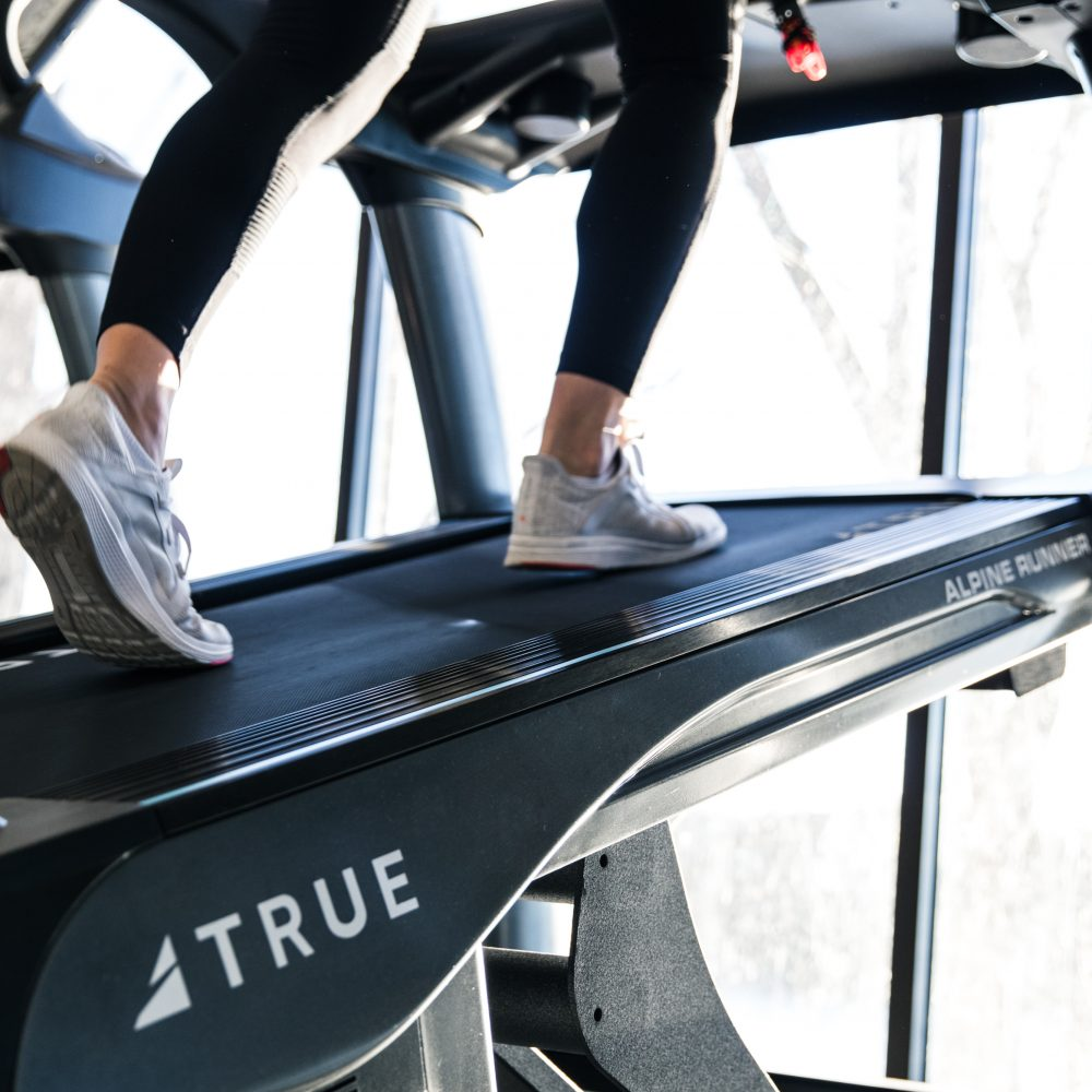 Alpine Runner Incline Trainer by TRUE Fitness