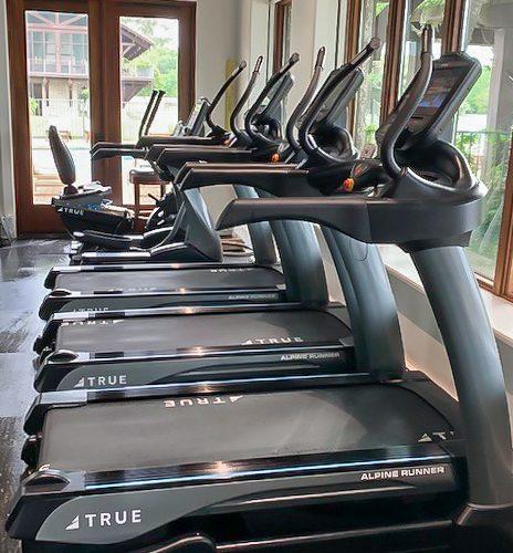 Frederica Golf Club using TRUE Fitness equipment.